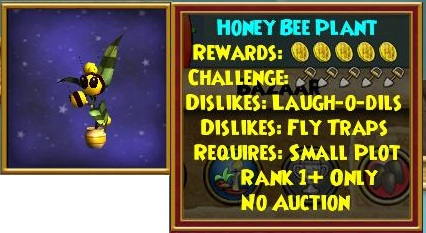 honey%20bee%20plant.jpg