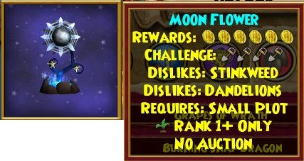 moon%20flower.jpg