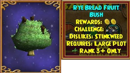 rye%20bread%20fruit%20bush.jpg